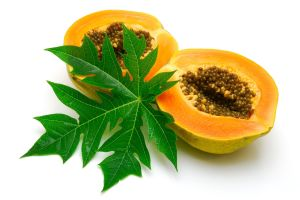 Papaya-Health-Benefits-Ayurveda-Papaya-Recommendations