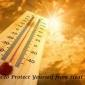 8 Ways To Protect Yourself From Heat Stroke